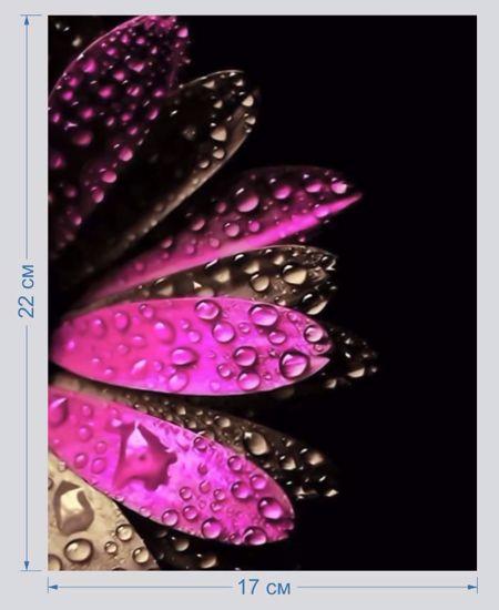 Изображение Аппликация пришивная